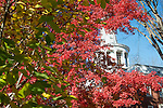 Galbreath Chapel, Athens Campus, Campus Beauty, Fall, Seasons