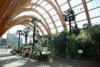 The Winter Gardens in Sheffield City Centre,South Yorkshire