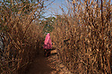 Kenya - Dadaab - A Somali refugee walking in the narrow alleys of Ifo camp.