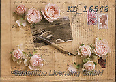Interlitho-Alberto, FLOWERS, BLUMEN, FLORES, photos+++++,roses,KL16548,#f#, EVERYDAY