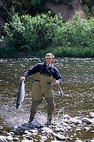 """Europe/Grande-Bretagne/Ecosse/Moray/Speyside/Spey River : Ian Gordon """"gilly"""" guide de pêche - Pêche au saumon à la mouche- Prise d'un saumon [Non destiné à un usage publicitaire - Not intended for an advertising use]"""