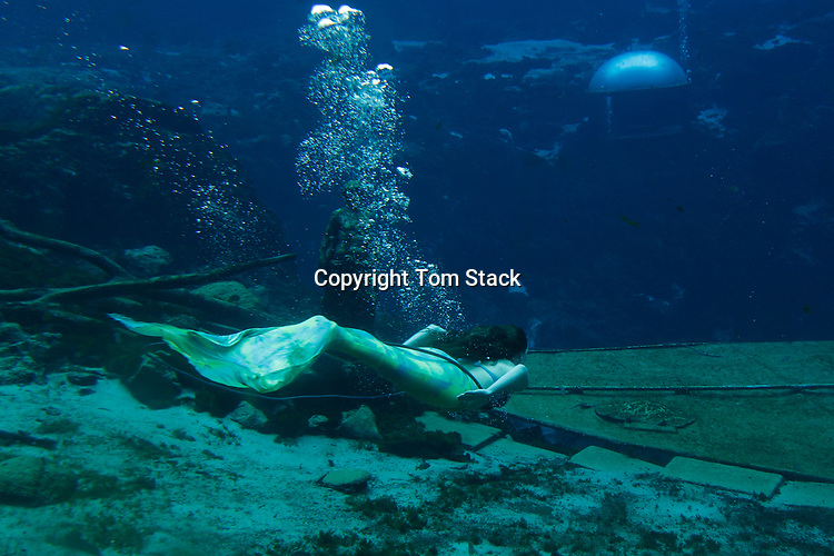Mermaids performing underwater at Weeki Wachee Springs State Park