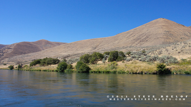 The sage, alder, and the soft hills of the lower Deschutes River.