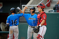 Akron RubberDucks right fielder Jodd Carter (16) celebrates with Mark Mathias (12) after hitting a home run in the top of the sixth inning as catcher Taylor Gushue (36) looks on during a game against the Harrisburg Senators on August 18, 2018 at FNB Field in Harrisburg, Pennsylvania.  Akron defeated Harrisburg 5-1.  (Mike Janes/Four Seam Images)