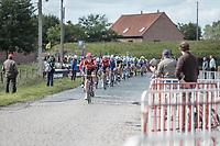 peloton racing the cobbles<br /> <br /> 102nd Kampioenschap van Vlaanderen 2017 (UCI 1.1)<br /> Koolskamp - Koolskamp (192km)
