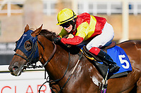Winner of The Mercedes-Benz of Salisbury Handicap (For Lady Amateur Riders) Relight my Fire ridden by Emily Easterby and trained by Tim Easterbyu  during Twilight Racing at Salisbury Racecourse on 14th September 2018