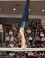 Men's Big Ten Gymnastics All around Championships 04-05-2008, @ Penn. State University