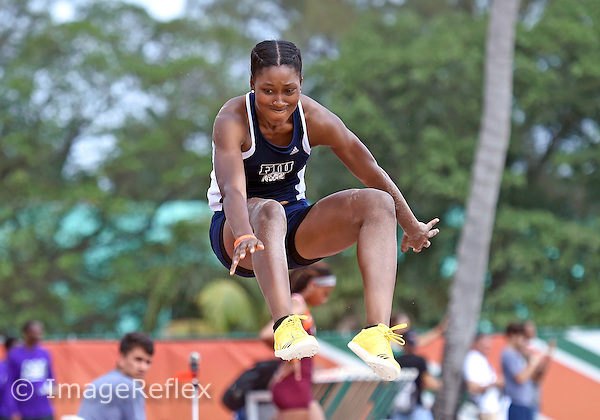 Florida International University's Clarissa Cutliff long jumps at the University of Miami Hurricane Invitational Track Meet on March 19, 2016 at Coral Gables, Florida.