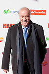 Spanish football team coach Vicente del Bosque attends the 75th Anniversary Marca Awards ceremony at Callao cinema in Madrid, Spain. November 26, 2013. (ALTERPHOTOS/Victor Blanco)