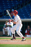 Ball State Cardinals Caleb Stayton (34) at bat during a game against the Louisville Cardinals on February 19, 2017 at Spectrum Field in Clearwater, Florida.  Louisville defeated Ball State 10-4.  (Mike Janes/Four Seam Images)