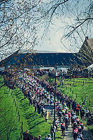 peloton hitting the Haaghoek<br /> <br /> 101th Ronde Van Vlaanderen 2017 (1.UWT)<br /> 1day race: Antwerp › Oudenaarde - BEL (260km)