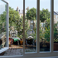 This small roof terrace is crowded with bay trees in terracotta pots