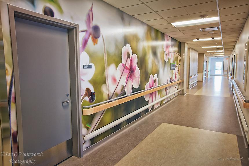 Oakville Trafalgar Memorial Hospital Hallway.
