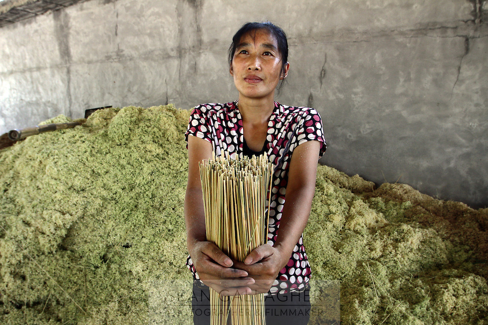 A worker inside a factory that produces furniture and chopsticks made of bamboo. Sichuan Province.
