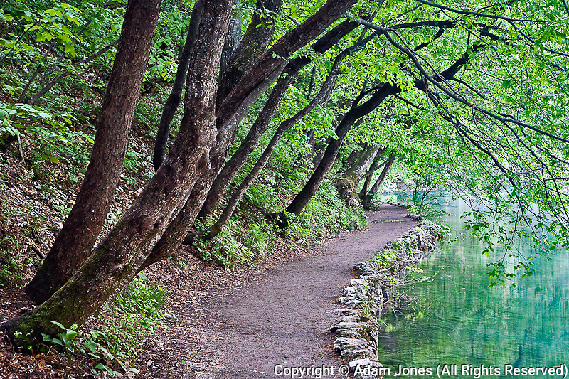 Footpath along Milanovac Jezero (Lake), Plitvice National Park, Croatia