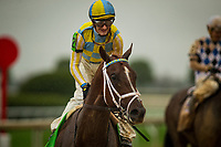 LEXINGTON, KY - OCTOBER 08: Flameaway #12 with Julien Leparoux returns victorious after The Dixiana Bourbon Stakes at Keeneland Race Course on October 08, 2017 in Lexington, Kentucky. (Photo by Alex Evers/Eclipse Sportswire/Getty Images)