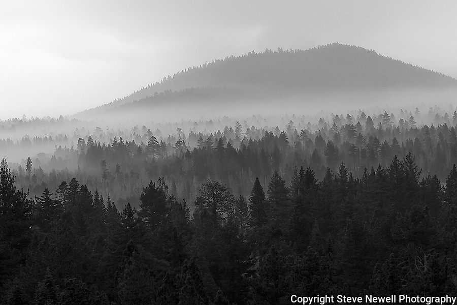 """Mystical Morning"" Black and White Gardner Mountain- Lake Tahoe, CA. I captured this image at sunrise the morning after the Angora Fire here in South Lake Tahoe. The smoke gives the trees their depth and dimension. It looks as if there are a million trees."