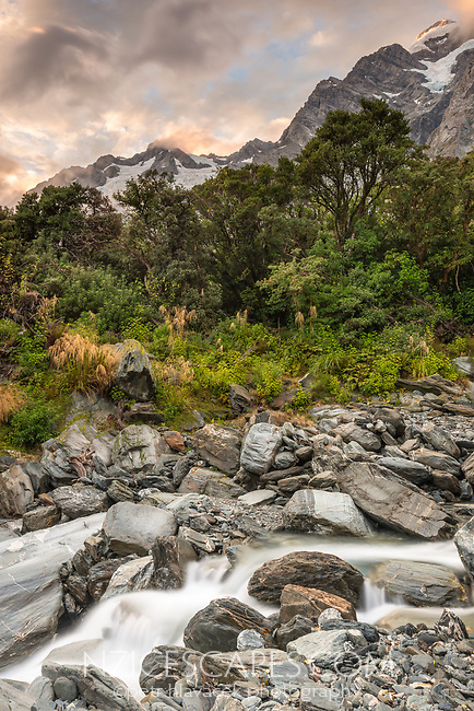Wild Tekano Creek near Douglas Rock Hut in Copland Valley at pastel sunrise, Westland Tai Poutini National Park, West Coast, South Westland, UNESCO World Heritage Area, New Zealand, NZ