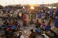 INDIA Mumbai Bombay, market women at fishing harbour/ INDIEN Mumbai, Marktfrauen im Fischereihafen