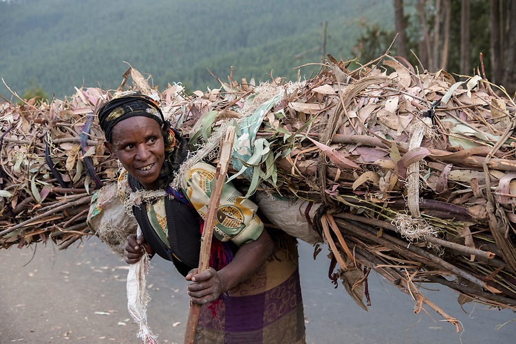 No one works harder than the uncountable old women cutting, gathering, and carrying firewood as seen throughout the entire country of Ethiopia.