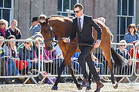 NZL-Jesse Campbell (KAAPACHINO) FIRST HORSE INSPECTION: 2016 GBR-Mitsubishi Motors Badminton Horse Trials CCI4* (Wednesday 4 May) CREDIT: Libby Law COPYRIGHT: LIBBY LAW PHOTOGRAPHY