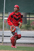 April 10, 2009:  Catcher Francisco Diaz of the Philadelphia Phillies extended spring training team during an intrasquad scrimmage at Carpenter Complex in Clearwater, FL.  Photo by:  Mike Janes/Four Seam Images
