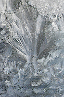 FROST<br /> Water In Its Solid State<br /> Ice Crystals