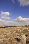 Israel, Shephelah, Tel Beit Mirsim