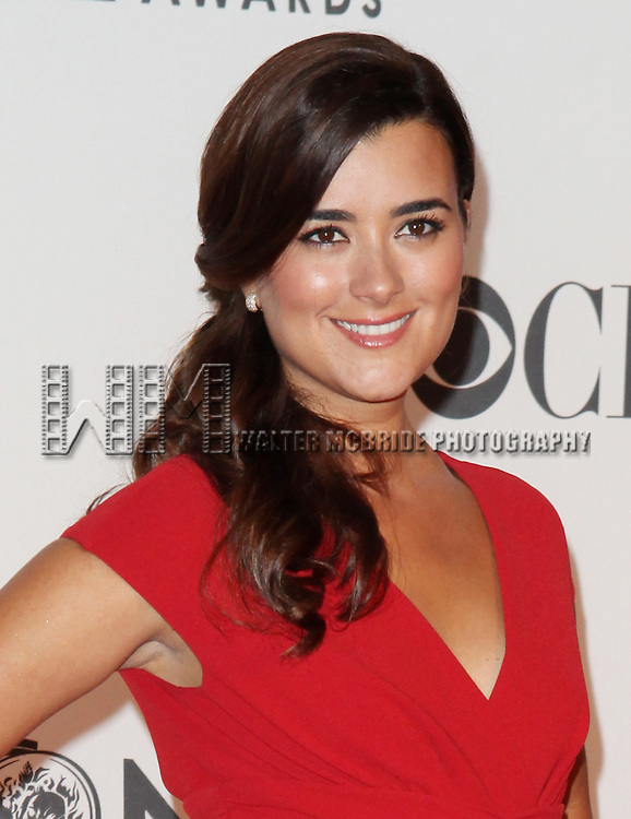 Cote de Pablo pictured at the 66th Annual Tony Awards held at The Beacon Theatre in New York City , New York on June 10, 2012. © Walter McBride / WM Photography