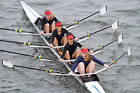 Crew: 248  Kings Sch Worcs  Event: Girls CHAMP quads<br /> <br /> Schools' Head of the River 2017<br /> <br /> To purchase this photo, or to see pricing information for Prints and Downloads, click the blue 'Add to Cart' button at the top-right of the page.