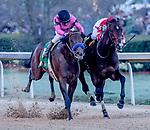 03-16-19 Rebel Stakes Day Oaklawn