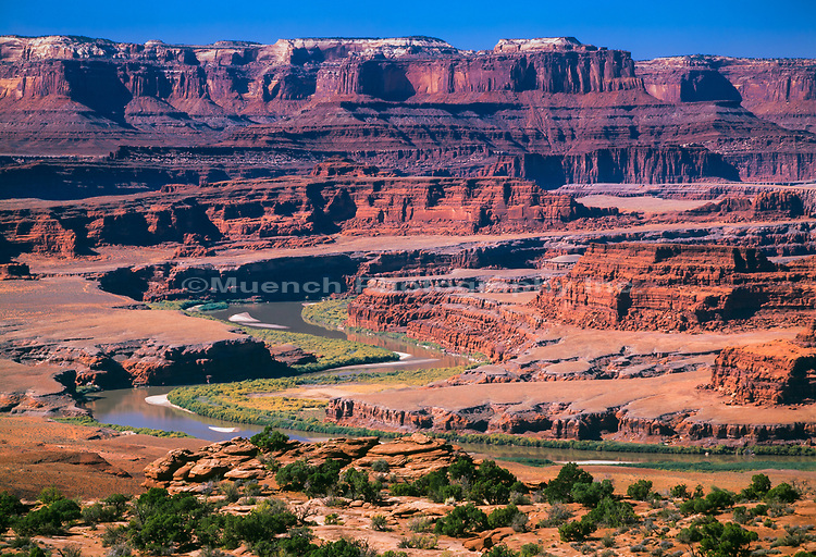 Colorado River,Meander Canyon,Canyonlands National Park,Utah