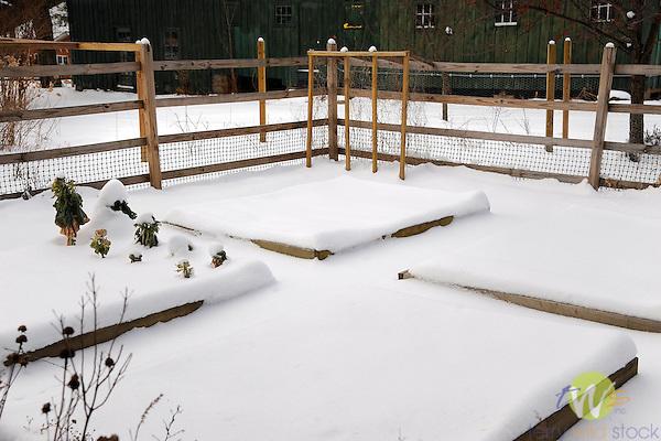 Raised bed garden in winter. Eagles Mere Inn. PA.