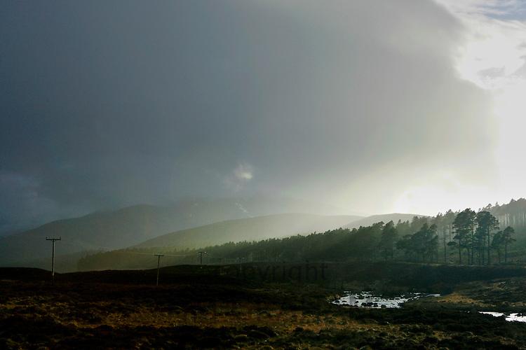 Glenmuick looking towards Deeside and Locknagar Forrest, Grampian Mountains, Scotland
