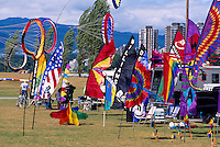 International Kite Flying Festival