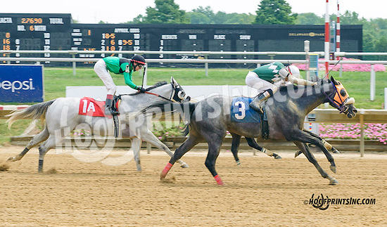 Silk n' Sequins winning at Delaware Park on 8/31/15