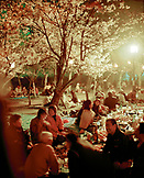 JAPAN, Kyushu, people picnicking under cherry blossom trees, Cherry Blossom Festival