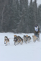 Jr. Iditarod Willow Lake  start / finish  Katrina DeLoach