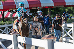 July 25, 2020: Whitmore ridden by Joel Rosario enters the track before the start of the Alfred G Vanderbilt grade 1  on Alfred G Vanderbilt  Day at Saratoga Race Course in Saratoga Springs, New York. Rob Simmons/Eclipse Sportswire/CSM