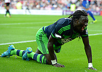 Bafetibis Gomis of Swansea City celebrates scoring their first goalduring the Barclays Premier League match between Sunderland and Swansea City played at Stadium of Light, Sunderland