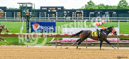 Curlin's Kid winning at Delaware Park on 6/8/16