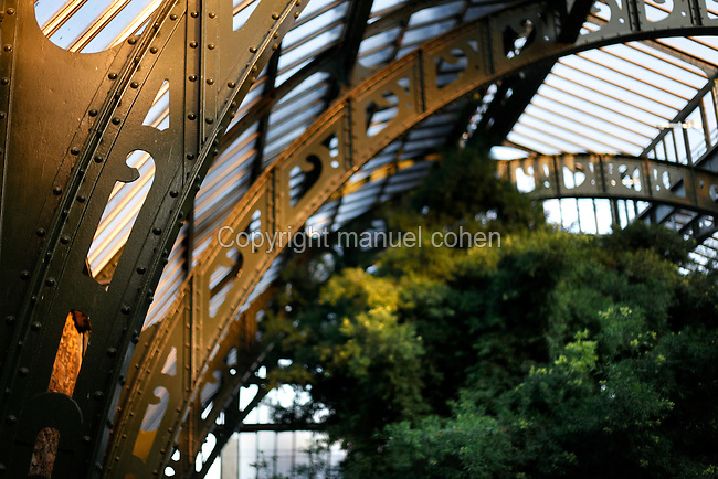Plant History Glasshouse (formerly Australian Glasshouse), 1830s, Rohault de Fleury, Jardin des Plantes, Museum National d'Histoire Naturelle, Paris, France. Low angle view of the glass and iron roof, seen from the first floor, arching above the plants growing below at sunset.