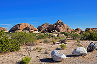 Rock formation in the Mohave Desert, Joshua Tree National Park, CA.