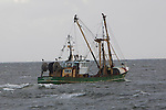 Dutch fishing vessel on the North Sea for Sole and Flounder