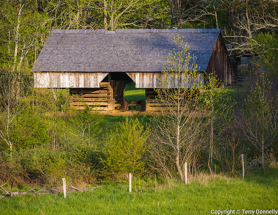 """Great Smoky Mts. National Park, TN/NC<br /> Cantilever barn seen amid the spring hardwood forest at """"The Tipton place"""" farm site in Cades Cove"""