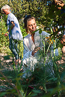Young woman picking up flowers in the garden