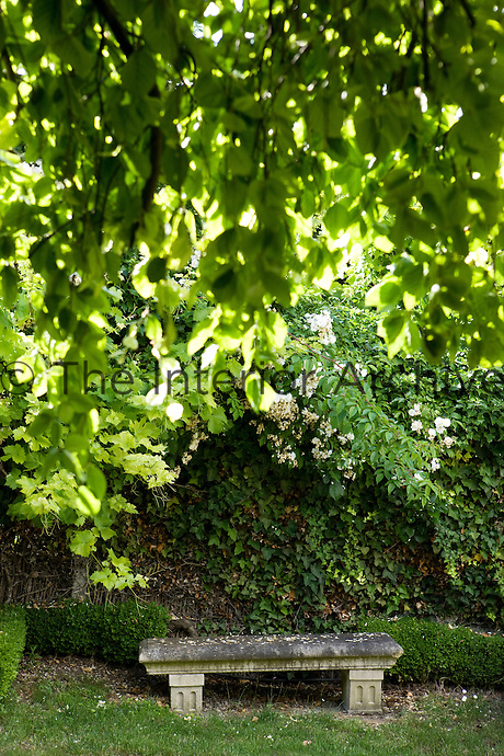 In a corner of the garden an antique stone bench is placed in the shade of an ancient tree