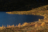 Autumn mountain landscape near lake Vikjordvatnet, Vestvågøy, Lofoten Islands, Norway