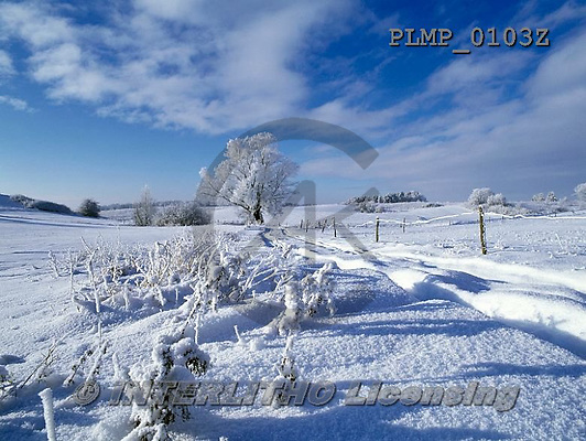 Marek, CHRISTMAS LANDSCAPES, WEIHNACHTEN WINTERLANDSCHAFTEN, NAVIDAD PAISAJES DE INVIERNO, photos+++++,PLMP0103Z,#xl#