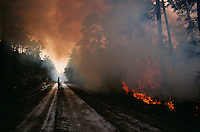 Fire fighters carefully watch flames and smoke from a prescribed burn set in the Okefenokee National Wildlife Refuge. Controlled fires in the swamp help reduce the thick undergrowth in the jungle-like environment. Lightening strikes from frequent summer storms cause wild fires, which can spread to private land.